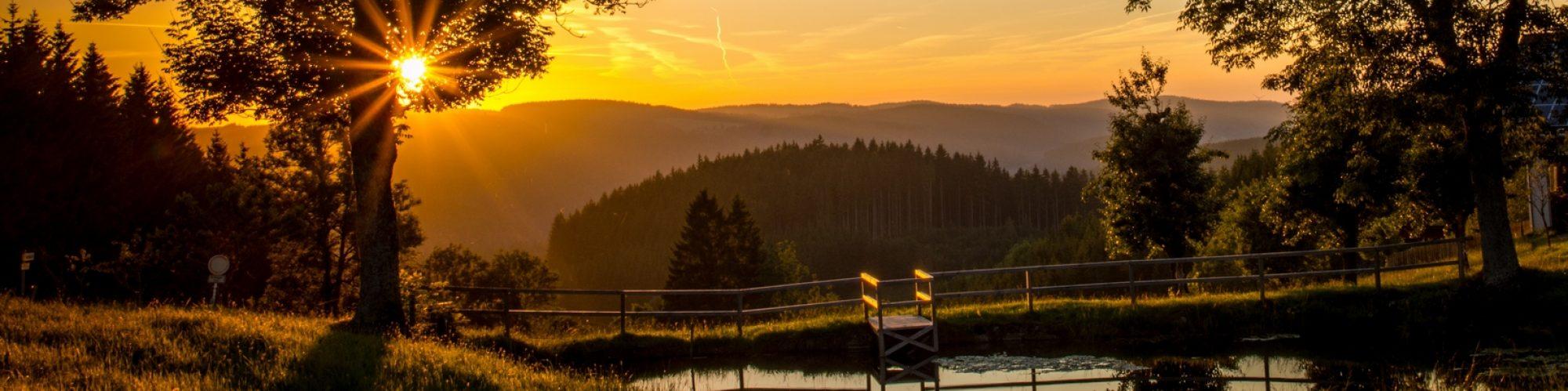Schwarzwald Ferienwohnung