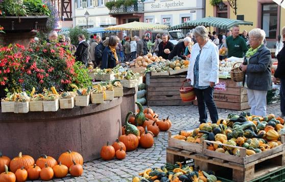 Markt Haslach